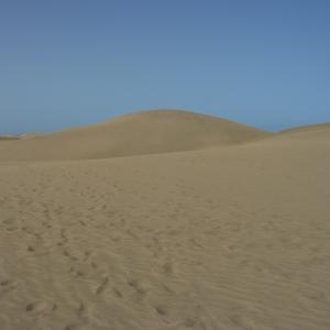 Dünen von Maspalomas hinter FKK-Strand (Bude 4)